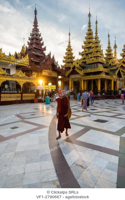 Yangon, Myanmar (Burma). Old monk walking in the Shwedagon pagoda at sunrise
