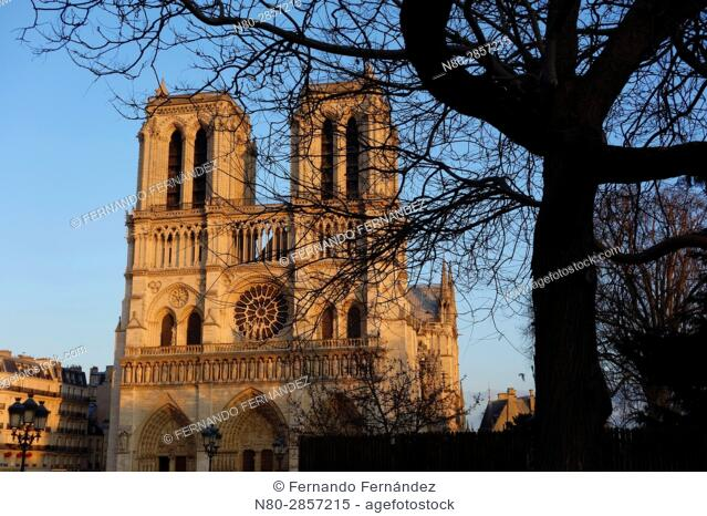 Notre Dame Cathedral. Paris. France. Europe