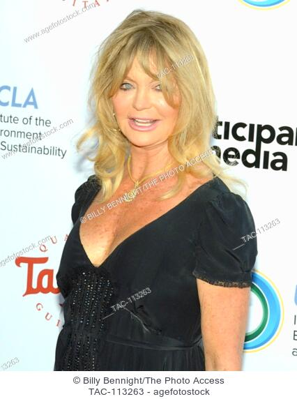 Goldie Hawn attends UCLA Institute of the Environment and Sustainability celebration of the Champions Of Our Planet's Future on March 24, 2016 in Beverly Hills