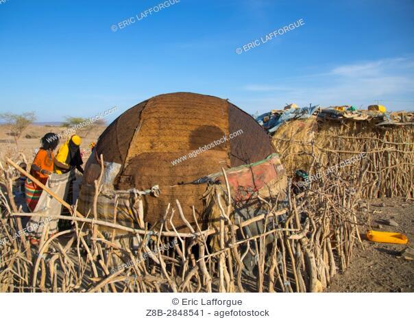Afar tribe women building a hut behind a wooden fence, Afar region, Mile, Ethiopia