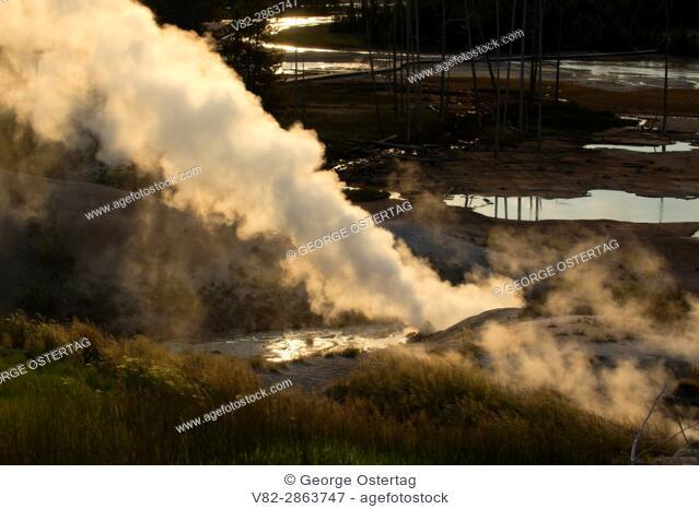 Black Growler Steam Vent at Norris Geyser Basin, Yellowstone National Park, Wyoming