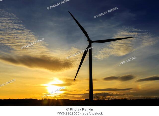 Wind turbine at sunset on Eaglesham Moor, Whitelee wind farm, near Glasgow, Scotland, Uk