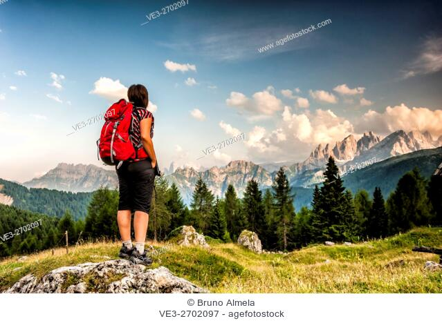View of dolomites Pale di San Martino Group from near Fuciade Refuge. This group belongs to the Paneveggio and Pale di San Martino Park (Autonomous Province of...