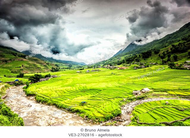 Terraced rice fields near Ta Van village in Valley of Muong Hoa river, Sa Pa District, Lao Cai Province, Vietnam