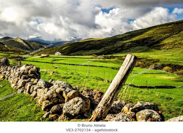 Pastures in Somiedo mountain pass near El Puerto (region of Asturias, Spain)