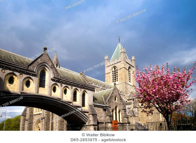 Ireland, Dublin, Christ Church Cathedral, exterior