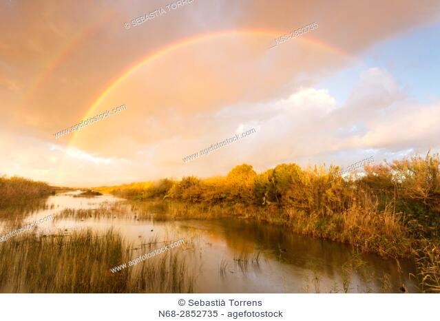 Rainbow over PN s'Albufera, Majorca, Spain
