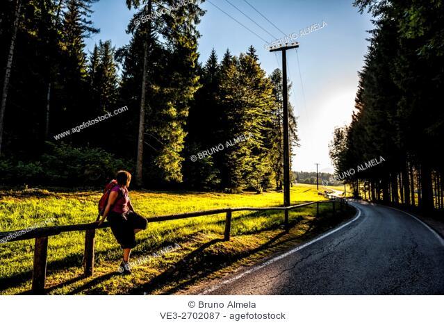 Walking in Sella Valley near Malga Costa , Borgo Valsugana (Autonomous Province of Trento, Region of Trentino-Alto Adige, Italy)