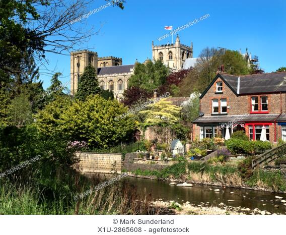 Ripon Cathedral from the Banks of the River Skell on a Sunny Spring Day Ripon North Yorkshire England