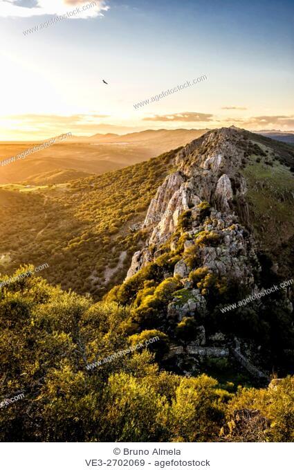 View of Salto del Gitano from Monfragüe's Castle in Monfragüe National Park (Cáceres Province, Extremadura Region, Spain)