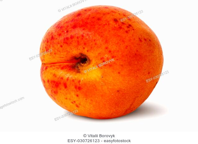 Ripe juicy apricots rotated isolated on white background