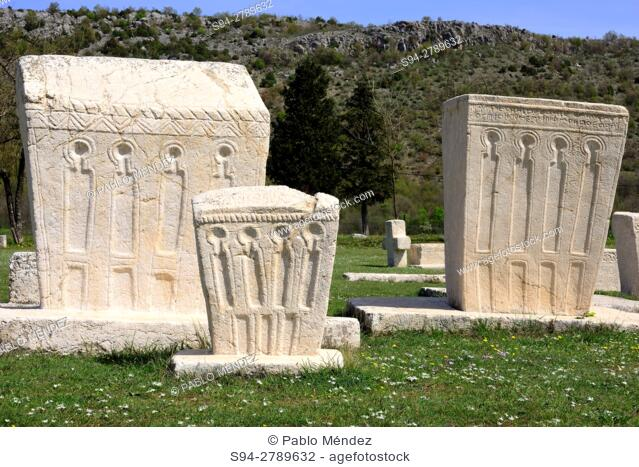 Stecci, middle age sculptures in Stolac, Bosnia and Herzegovina