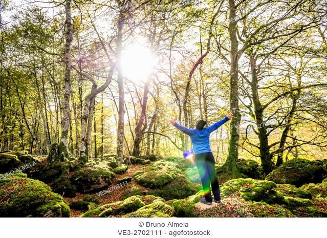 Magical beech forest between Organbidea mountain pass and Orbaitzeta foundry , Region of Navarra, Spain