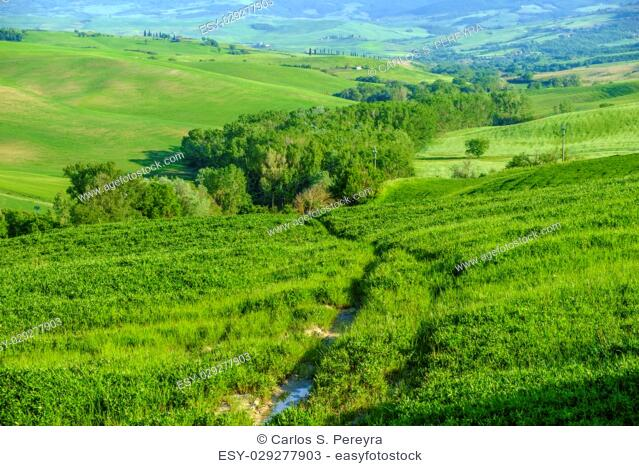 Countryside landscape around Pienza Tuscany Italy