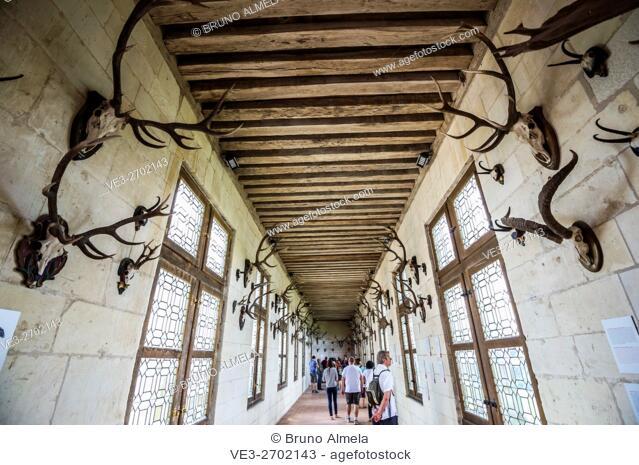 Inside of the royal Château de Chambord (department of Loir-et-Cher, region of Centre-Val de Loire, France)