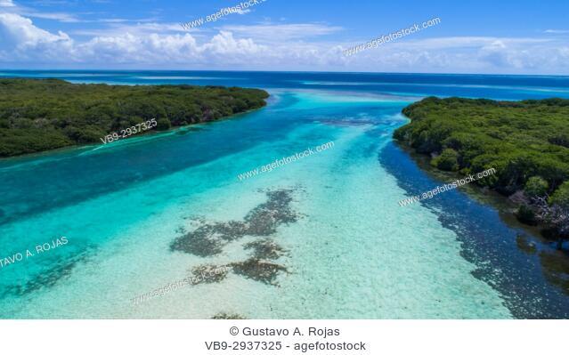 Aerial View mangroves at Boca de Bobos Los Roques Nat. Park Venezuela